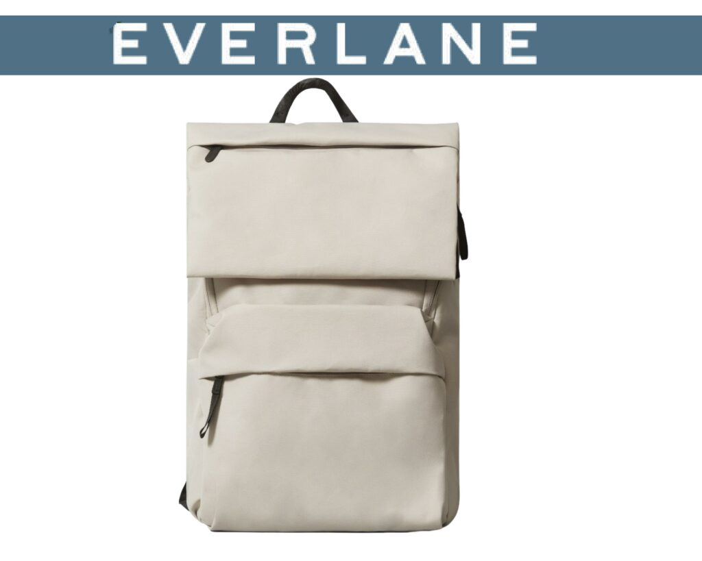 Everlane Renew Transit Backpack Review: Logo & backpack