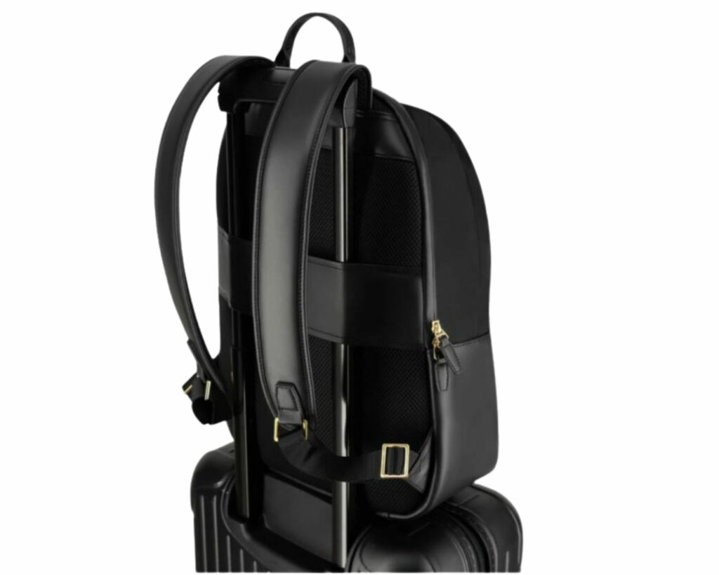 ISM Backpack Review: The ISM Backpack luggage strap
