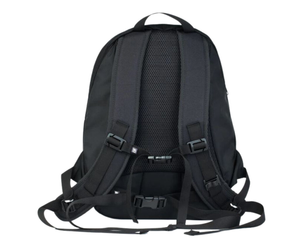Tom Bihn Synapse 19 review: The Tom Bihn Synapse 19 backpack back view with sternum and chest straps