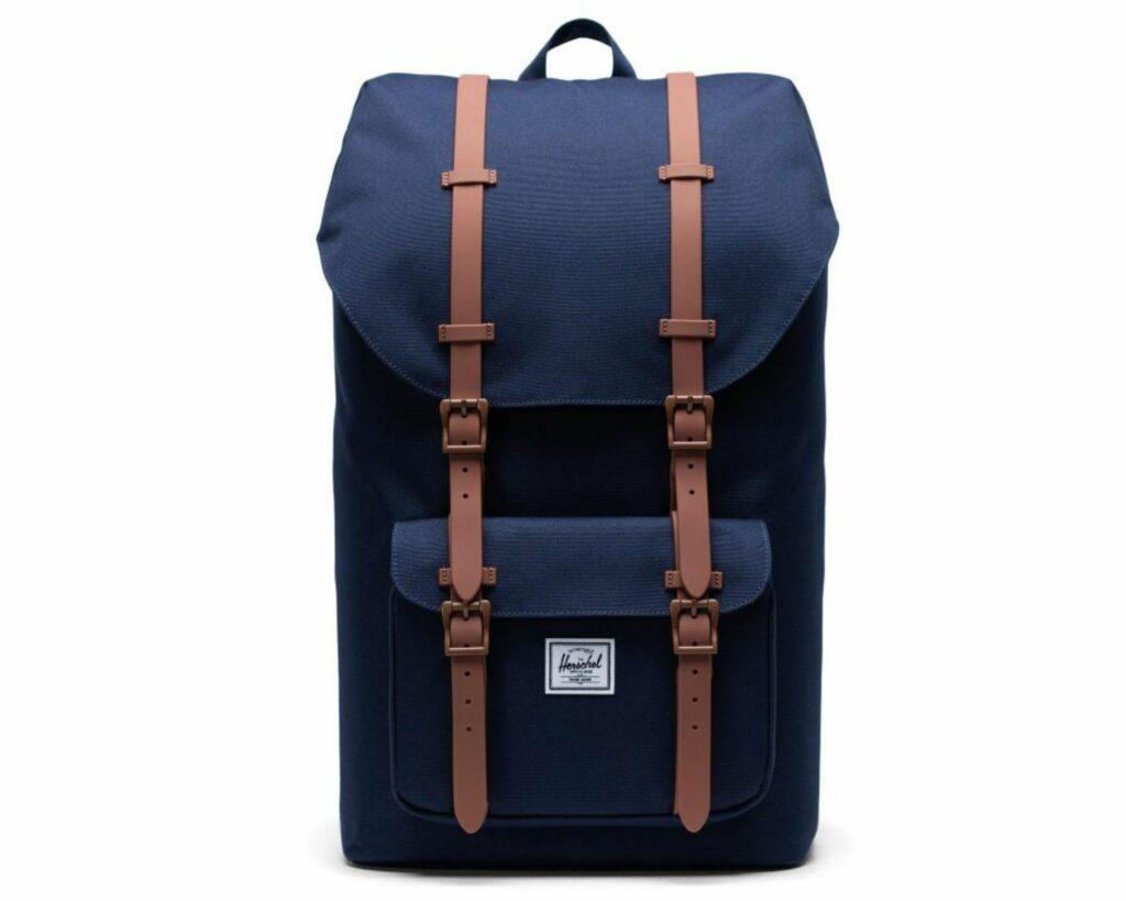 Topo Designs Daypack Review: Herschel Little America backpack