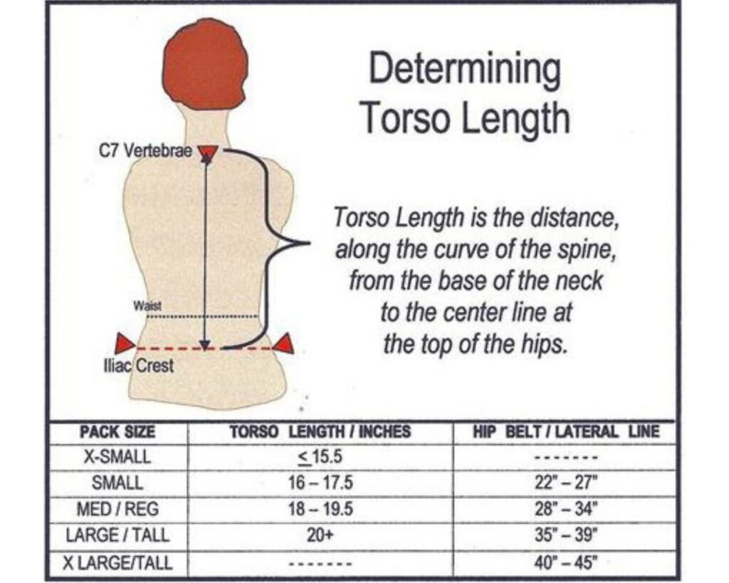 Best backpacks for back pain:: Pictoral representation of how to measure your torso?