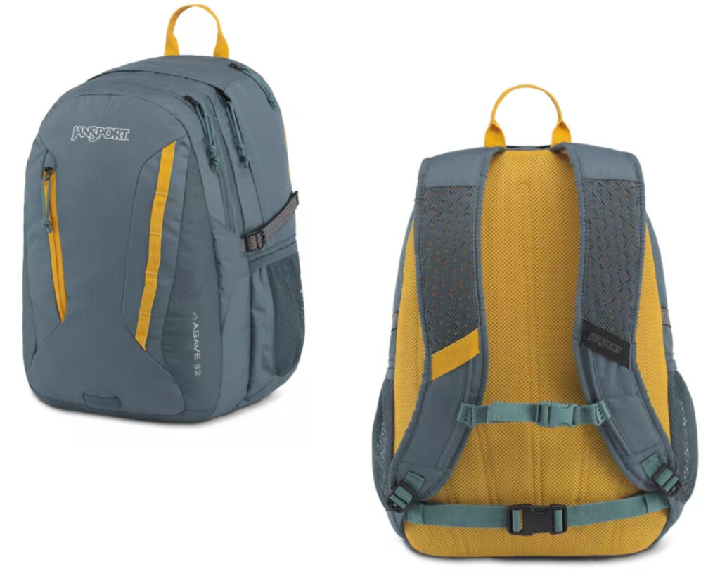 Best backpacks for backpain review: Jansport Agave Daypack