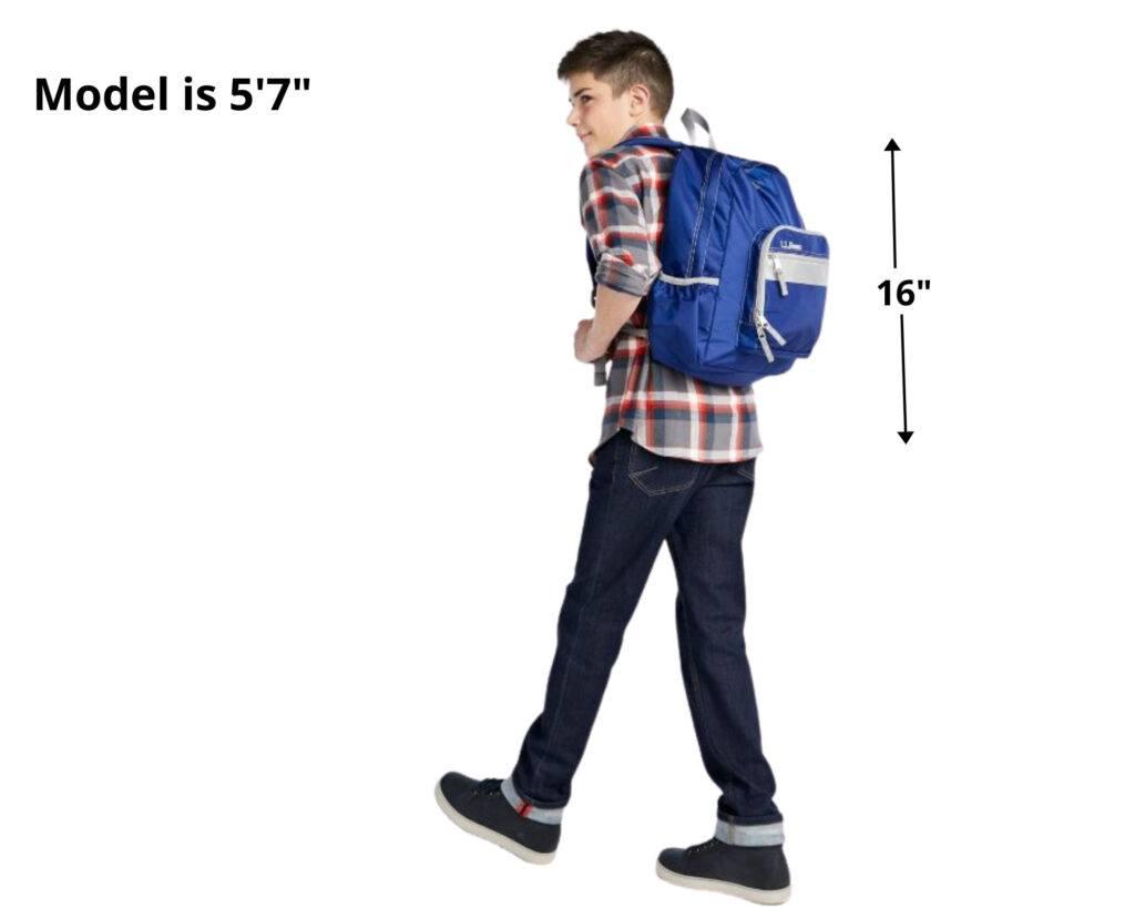 Best backpacks for Back Pains: L.L. Bean Original Book Pack