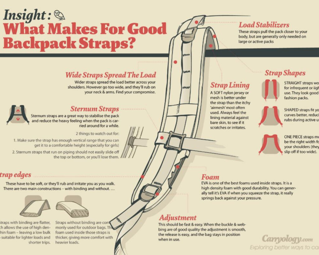 Best backpacks for back pain: an infogram detailing the different components of a shoulder strap