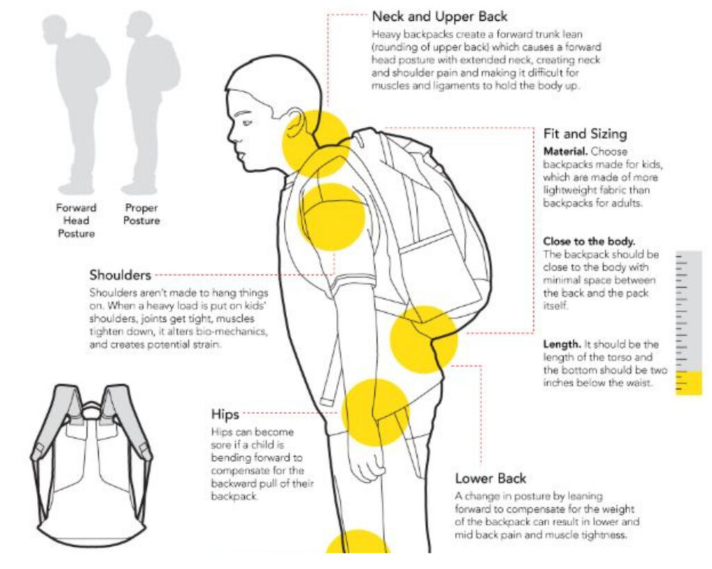 Best backpacks for back pain: an infogram explaining weight distribution and how to carry a backpack